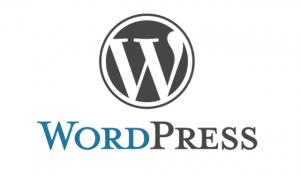 jeftina-izrada-sajta-u-wordpress-u